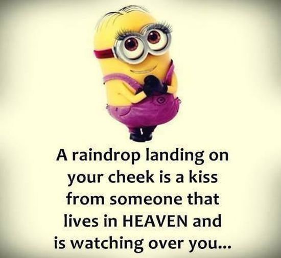 Aw❤ Cute Minion girl hugs.. raindrops, kiss, heaven. 。◕‿◕。 See my Despicable Me Minions pins https://www.pinterest.com/search/my_pins/?q=minions