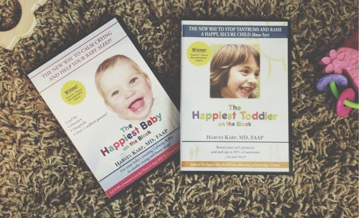 happiest toddler on the block tips