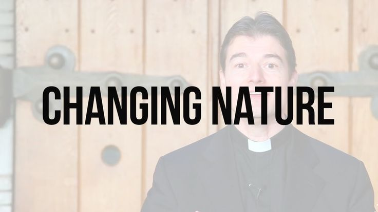 Reflections on Scripture: Changing Nature