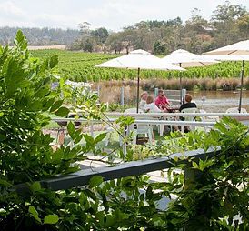 Puddleduck Vineyard - makers of fine Tasmanian wine. Stunning Winery near Hoabart, in the Coal River Valley, Richmond. Wine tastings, Cellar Door & Online Sales