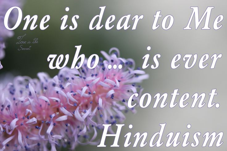"""One is dear to Me who does not hate any creature, who is friendly and compassionate, free from the notion of """"I"""" and """"my"""", even-minded in pain and pleasure, forgiving; and who is ever content, who has subdued the mind, whose resolve is firm, whose mind and intellect are engaged in dwelling upon Me, and who is devoted to Me."""