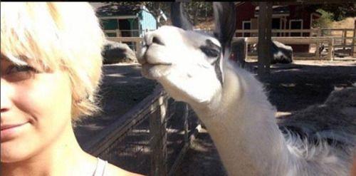 [VÍDEO] Hija de @michaeljackson regresa a Neverland:...