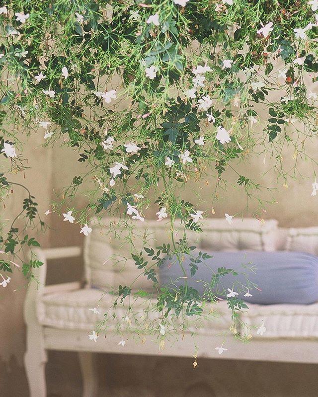 Friday Dream  #LuisaBeccaria_Lifestyle •  #luisabeccaria#romantic#lifestyle#trueromance#dreamy#lifestyleinspiration#design#decor