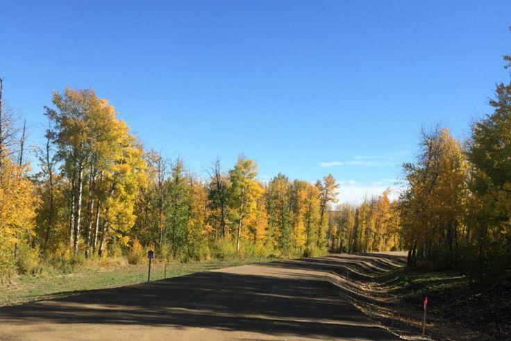 Acreage For Sale, Land Development And Sales - Hingley Subdivision - Dawson Creek, Bc