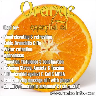 Uses And Benefits Of Orange (Full Guide) ►► http://www.herbs-info.com/essential-oils/orange-essential-oil.html?i=p
