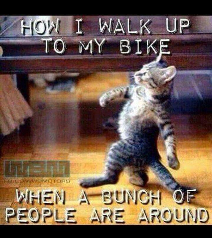 How I walk up to my bike
