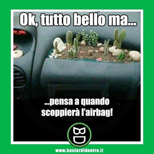#bastardidentro #airbag #cactus www.bastardidentro.it