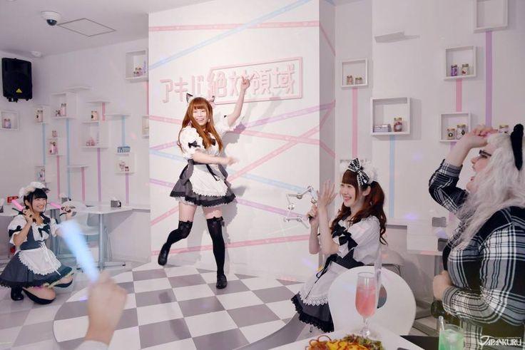 Kawaii and otaku, pastel colored theme maid cafe!! Plus a fun maid performance for everyone at Akiba Zettai Ryoiki! #japankuru #maidcafe #akiba #akihabara #akibazettai #kawaii #otaku #MaidPerformance #Pastel #PastelColors #アキバ絶対 #アキバ絶対領域 #秋葉原 #メイド #メイドカフェ #かわいい #メイドパフォーマンス #ダンス #おたく