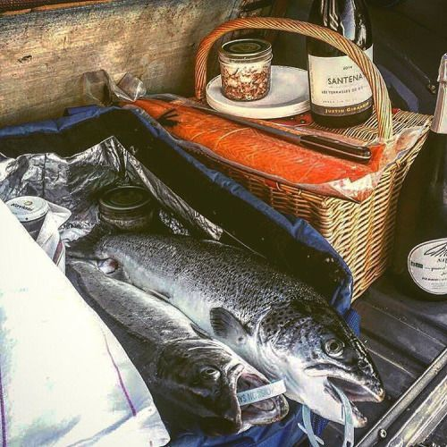 Pêche sur l'Adour. #gueuleton #pêche #paysbasque #bayonne #anglet #2cv #truite #saumon #piquenique #atable #pêcheur #bateau #adour #euskadi #france #tradition #artdevivre #fish
