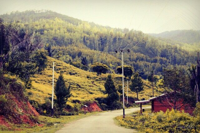 Autumm in a place that i used to know, Gayo Lues, Aceh, Indonesia.