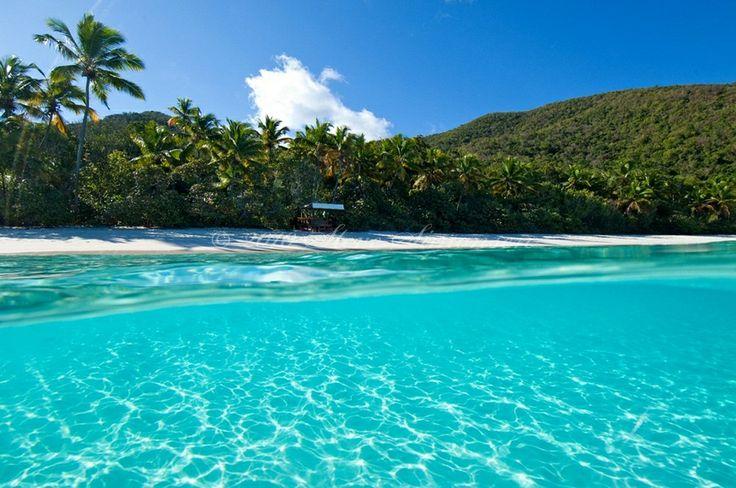 St. John!!!Bays St, Trunks Bays, Favorite Places, British Virgin Islands, St John, National Parks, Us Virgin Islands, Beach, Travel