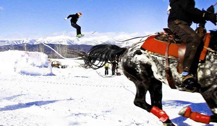 Equestrian skijoring