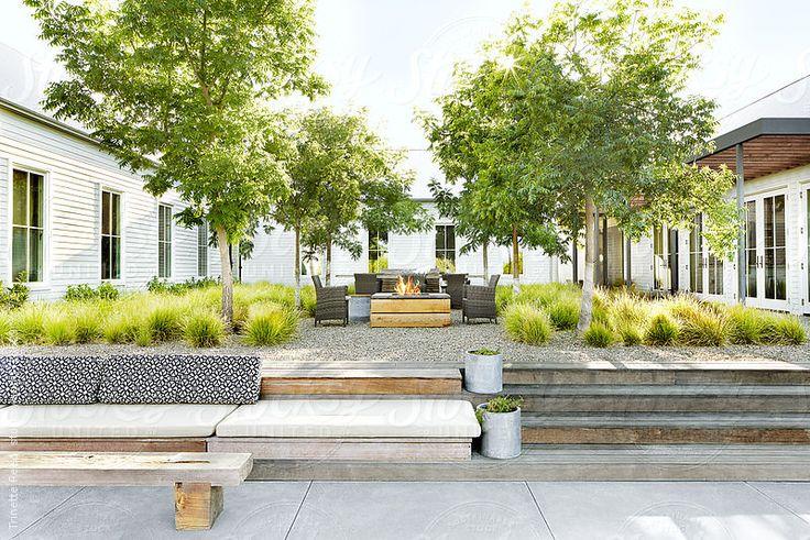 Atrium in beautiful modern design farmhouse in Sonoma, California