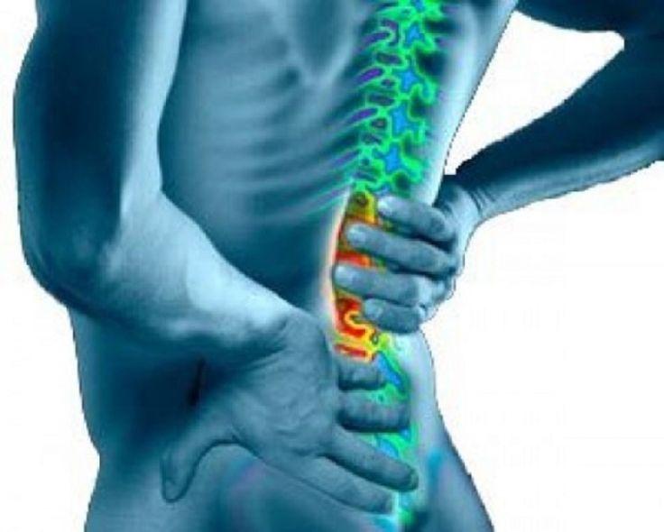 Шиповете са заболяване на опорно-двигателната система. Представляват формиране на ново костно образувание върху съществуваща кост. Ако се абстрахираме и   погледнем от човешка гледна...
