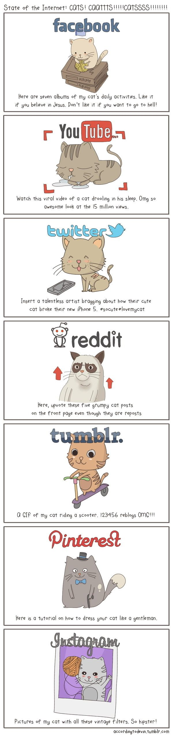 The State Of The Internet, As Told With Cats - BuzzFeed Mobile