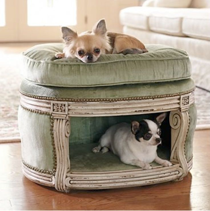 This is such a cute idea! - Top 10 Interesting Design Ideas for Pet Spaces