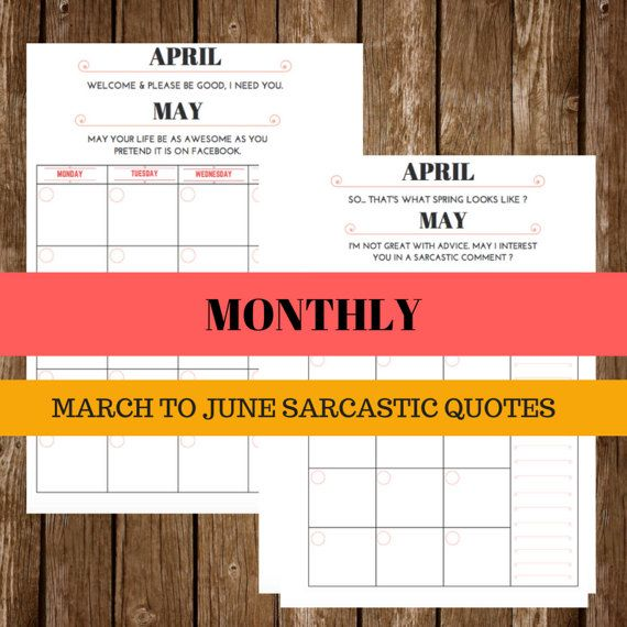 SPRING SARCASTIC AND FUNNY PLANNER : MONTHLY, WEEKLY, DAILY LETTER SIZE  - INSTANT DOWNLOAD  -