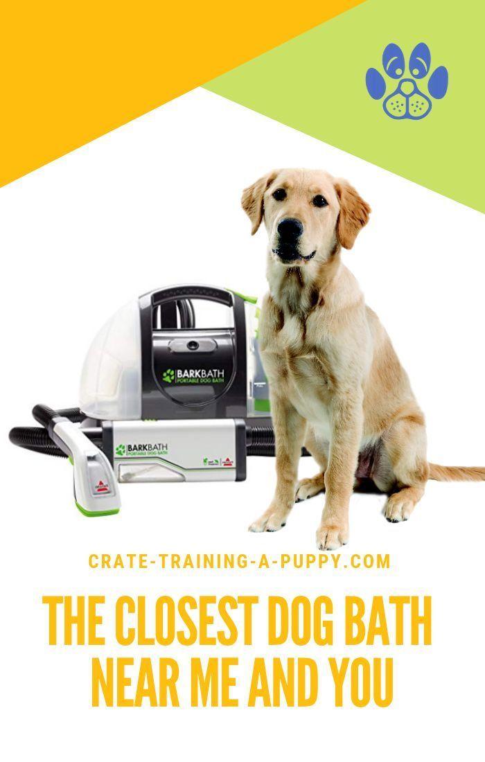 Dog Bath Shampoo New 2nd Gen Bissell Barkbath Qt