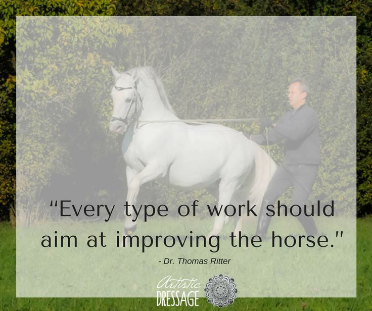 """Every type of work should aim at improving the horse.""   artisticdressage.com"