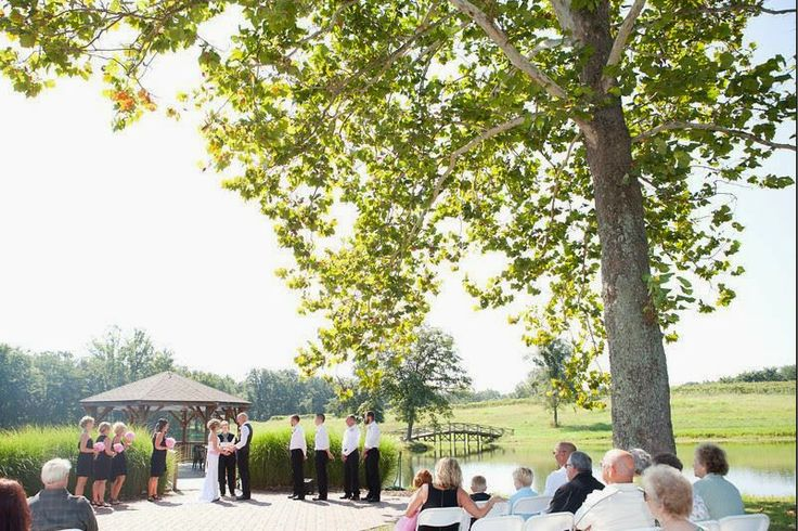 84 Best Images About St Louis Best Wedding Venues On Pinterest