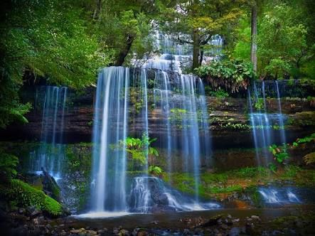 Russell Falls - Google Search