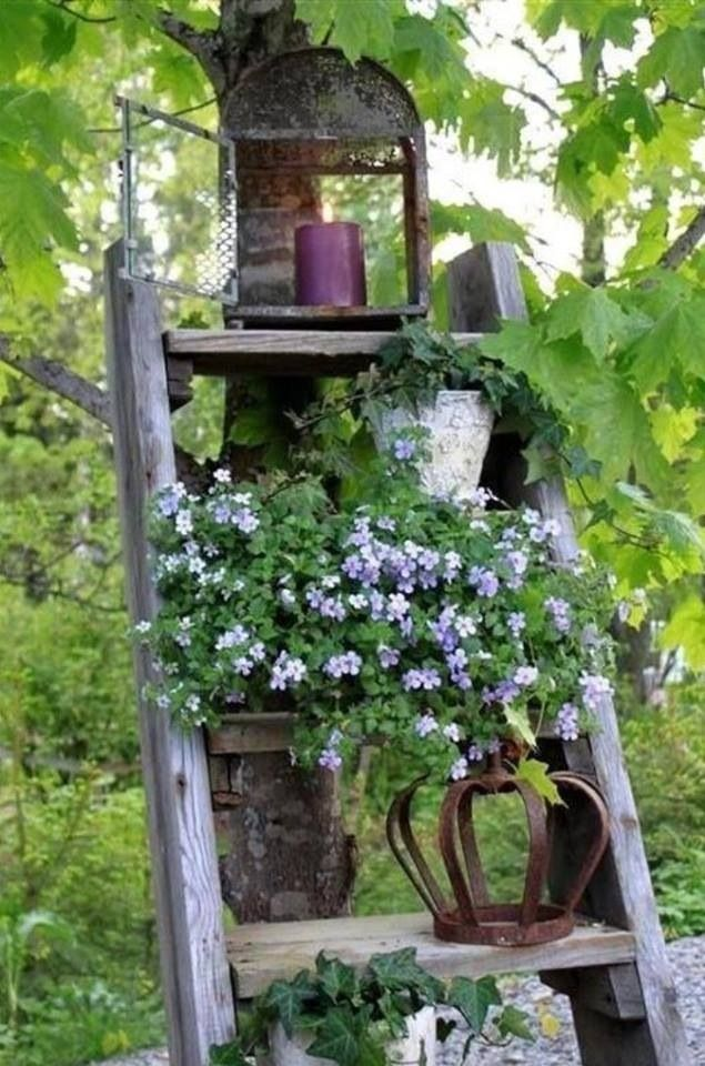 Repurposed ladder in the yard for pots.