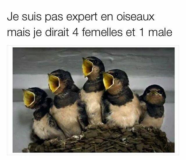 Y'a de quoi ! ^^