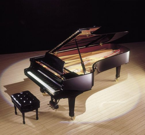 What a Great Piano for a Large Villa! http://pinterest.com/cameronpiano