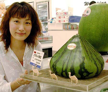 The Great Watermelons of Japan. #fruit