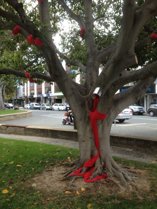 Red!  Kings Square, Fremantle