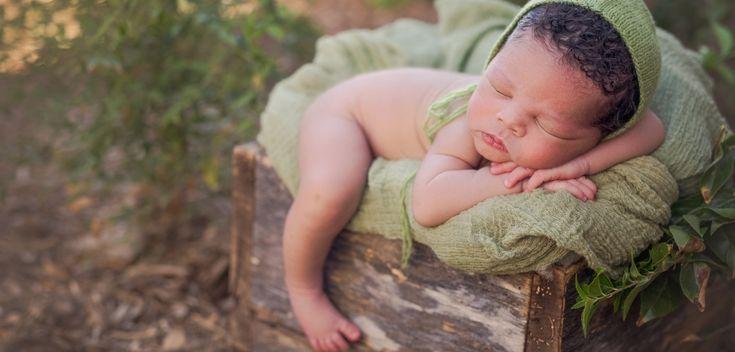 Susan Scott Photography | Newborn Photographer