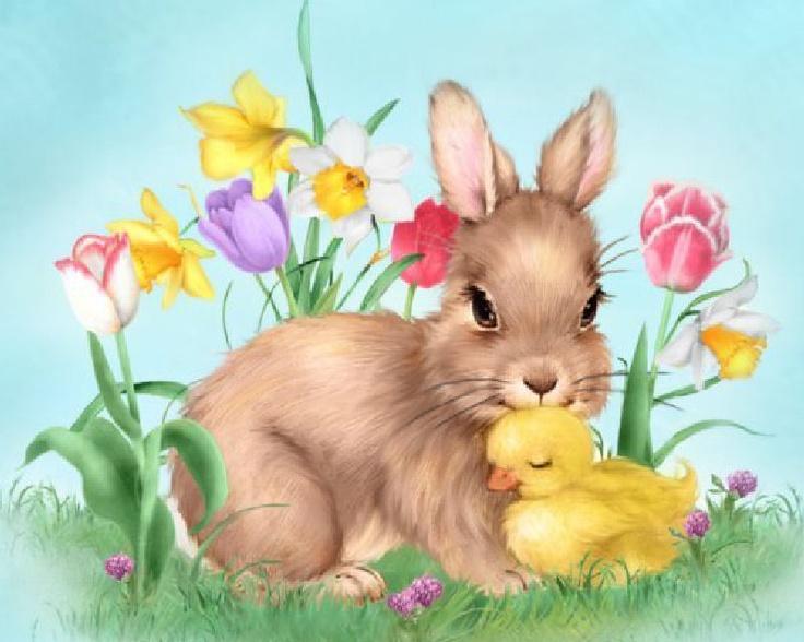 Bunny & Duck