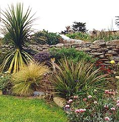 Coastal Garden Design heather garden on the coast with ornamental grasses lavender and conifers New Zealand Coastal Gardens Google Search Garden Design Pinterest Coastal Gardens Gardens And Plant Design