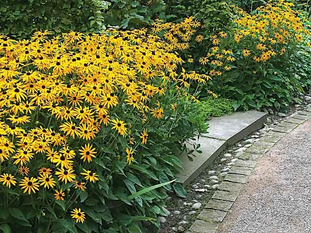 Choisir des plantes pour massifs inratables agencement de jardin bordure jardin massif - Agencement jardin ...