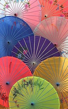 Wagasa, the traditional japanese umbrella made from bamboo and washi (Japanese paper), is renowned not only for its beauty but also for the precision open/close mechanism.