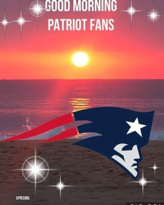 Pin By Moonwolf79 On Patriot 4life New England Patriots Football Patriots Football Patriots Fans