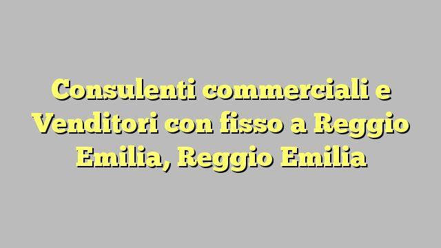 Consulenti commerciali e Venditori con fisso a Reggio Emilia, Reggio Emilia