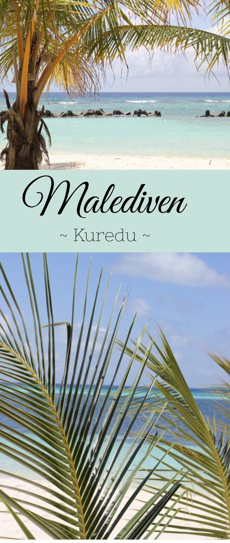Kuredu / Malediven - Ein Paradies zum Schnorcheln, Tauchen und Entspannen. Wunderschöne Palmen, weißer Sand und leckeres Essen zeichnen diese Insel besonders aus. Die Insel liegt im Lhaviyani Atoll und ist gut mit dem Wasserflugzeug von Male erreichbar.