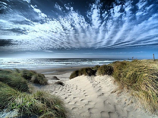 Oregon Dunes National Recreation Area - riders of ATVs will find some of the most radical hills in the country. It is the largest expanse of coastal sand dunes in North America.