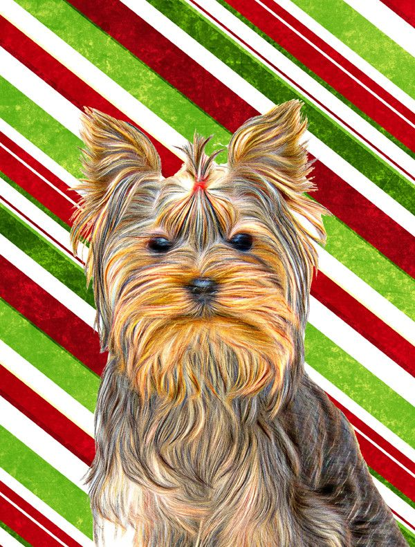 Candy Cane Holiday Christmas Yorkie/Yorkshire Terrier House Vertical Flag