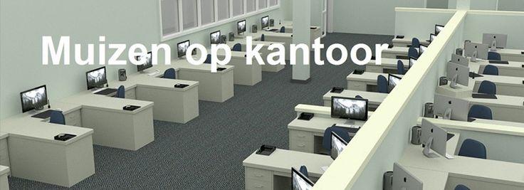 Muizen op kantoor is een veel voorkomen probleem. Er zijn veel mensen die zich in en rond kantoorgebouwen begeven. Een simpele stelregel is, daar waar mensen zijn, zijn ook muizen. Met de hygiëne wordt het niet