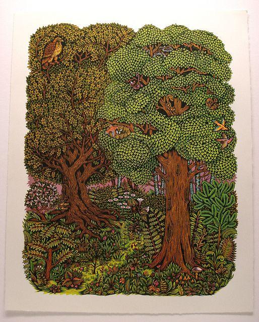 139 Best Illustrations Trees Images On Pinterest