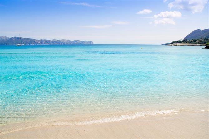 Mallorca - Strand von #Alcudia. Location für jährliche Beachvolleyballturniere. Gehört zu den saubersten und schönsten Badebuchten auf #Mallorca.