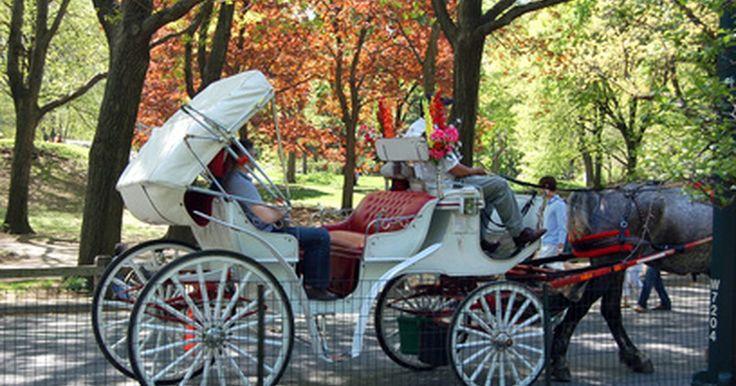 Tipos de carruagens puxadas por cavalos. Carruagens puxadas por cavalos estiveram em uso geral a partir do século XVIII e até o início dos anos 1900. As carruagens vieram em uma variedade de tipos, desde as diligências públicas até veículos particulares elegantes. Os carros originais do século XVII eram veículos básicos, sem molas. Pela Era da Regência no início dos anos 1800, carruagens ...