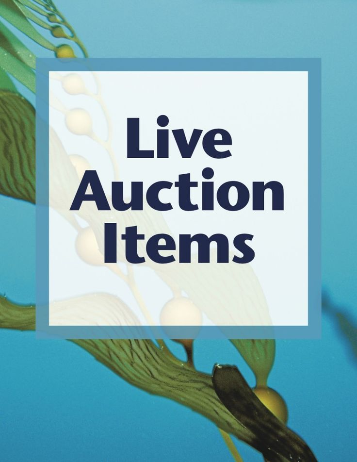 17 Best Images About Auction Planning Fundraising Tools
