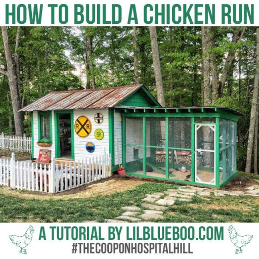 Best 20 building a chicken run ideas on pinterest yard for How to build a home bar from scratch