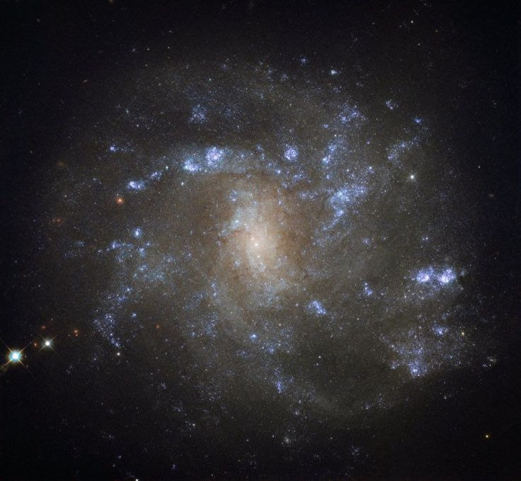 Discovered by British astronomer William Herschel over 200 years ago, NGC 2500 lies about 30 million light-years away in the northern constellation of Lynx. As this NASA/ESA Hubble Space Telescope image shows, NGC 2500 is a particular kind of spiral galaxy known as a barred spiral, its wispy arms swirling out from a bright, elongated core.