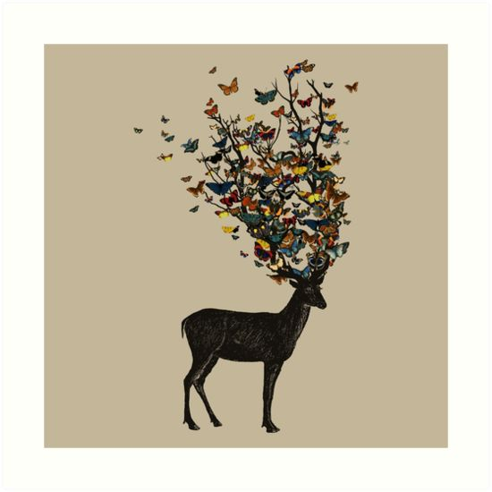 Wild Nature by tobiasfonseca