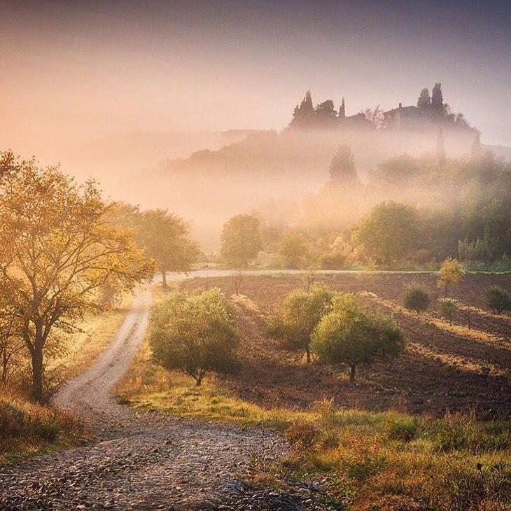 Nella nebbia luminosa del mattino la casa dolcemente indietreggia e s'appanna… (Corrado Govoni)