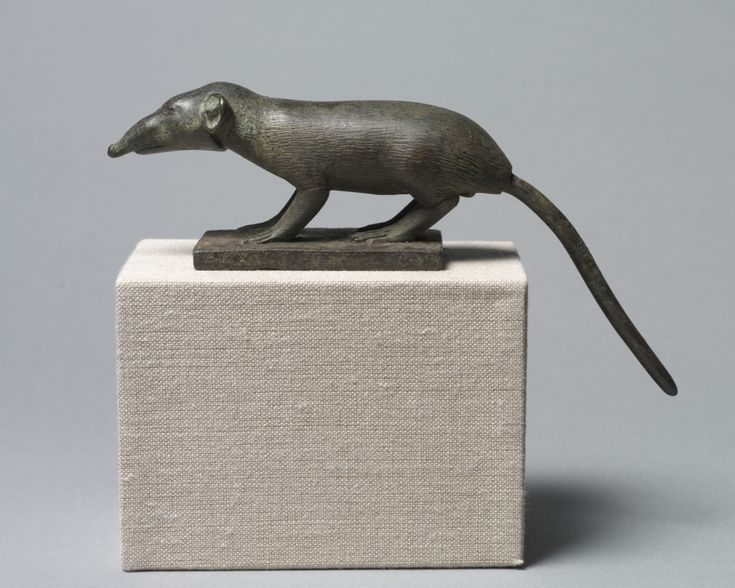 Shrew, 305-30 BC Egypt, Greco-Roman Period, probably Ptolemaic Dynasty bronze, solid cast, Overall - l:17.30 cm (l:6 3/4 inches) with tang - h:6.90 cm (h:2 11/16 inches) without tang - h:4.90 cm (h:1 7/8 inches) Base - h:7.00 w:3.90 d:0.70 cm (h:2 3/4 w:1 1/2 d:1/4 inches).